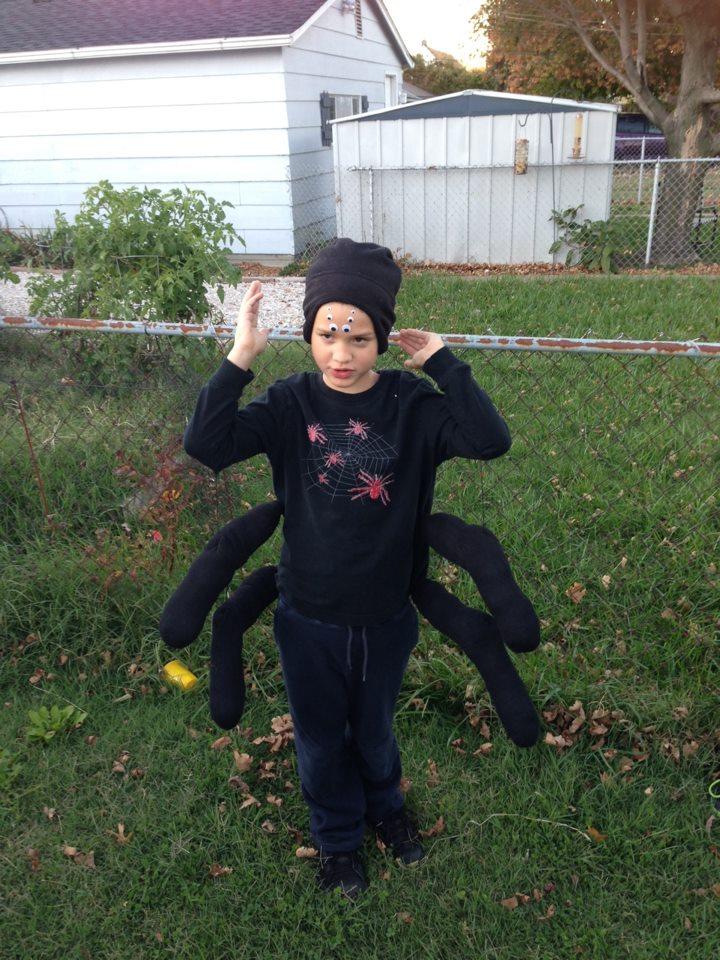 Linus the Tarantula Halloween 2012