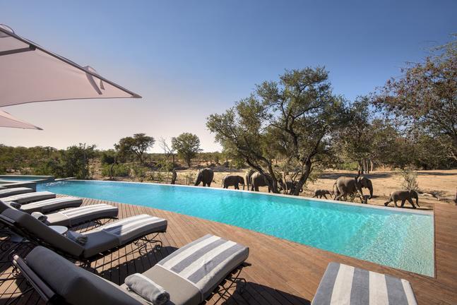 andBeyond Ngala Safari Lodge; Photo Credit Africa Inscribed