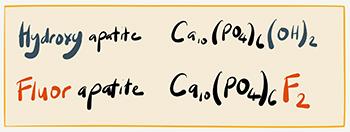hydroxy apatite and fluorapatite