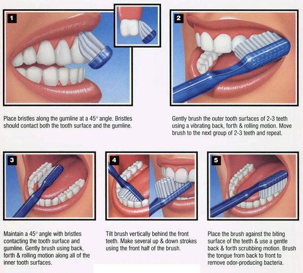 Five tips for brushing your teeth