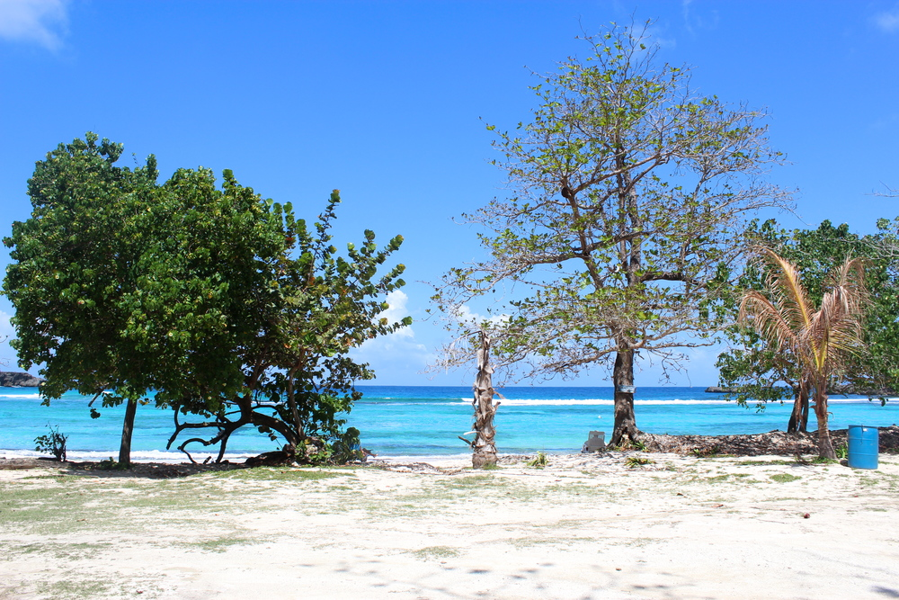 winnifred beach 1
