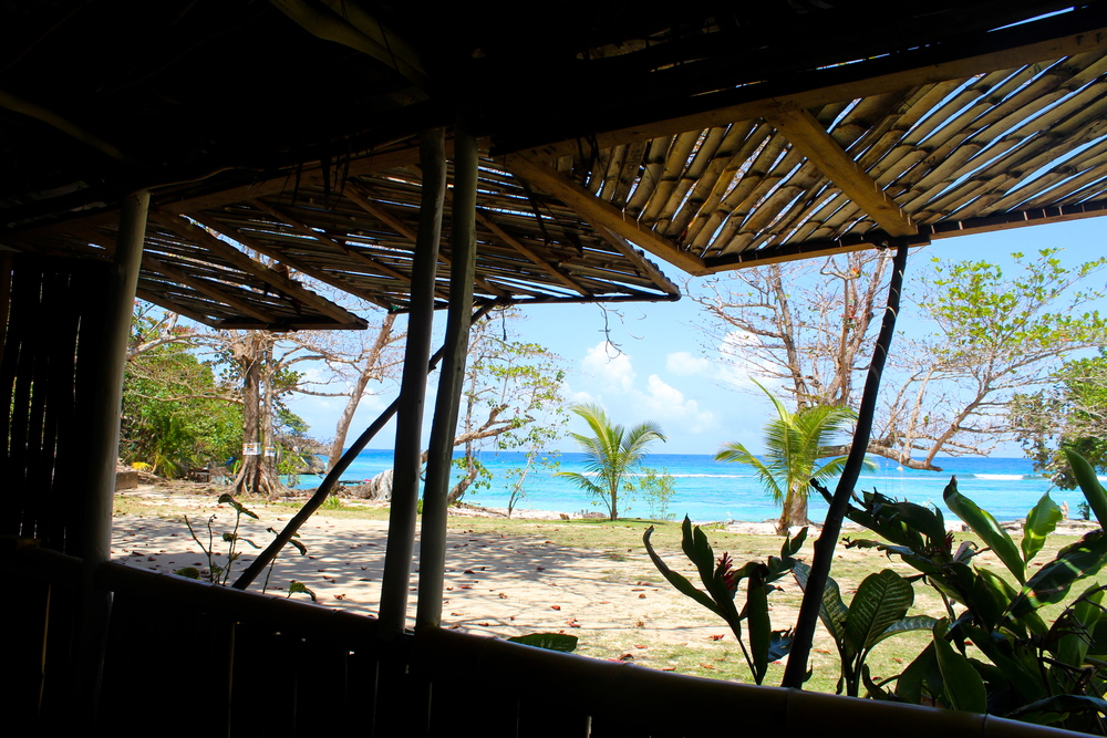 winnifred beach bar