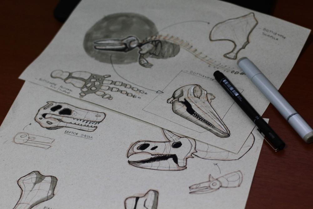 Fossil studies