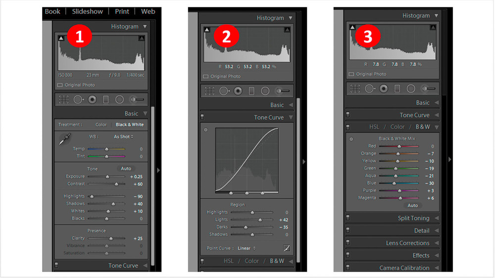 Improve your image by changing sliders in Basic, Tone Curve and B&W tabs !