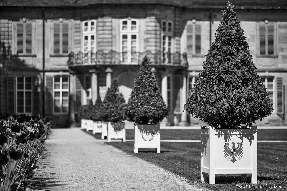 Park perspective (Hof Garden in Bayreuth)