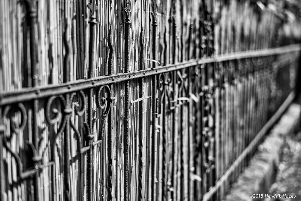 The Fence - a new perspective! 58mm f/1.4 @f/2