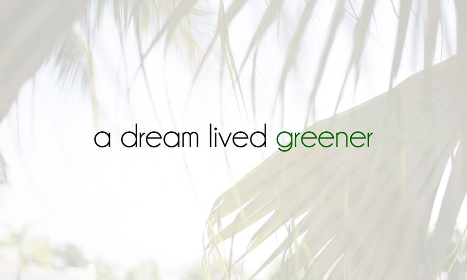 a dream lived greener a green dream dream love grow ottawa zero waste ottawa mompreneur