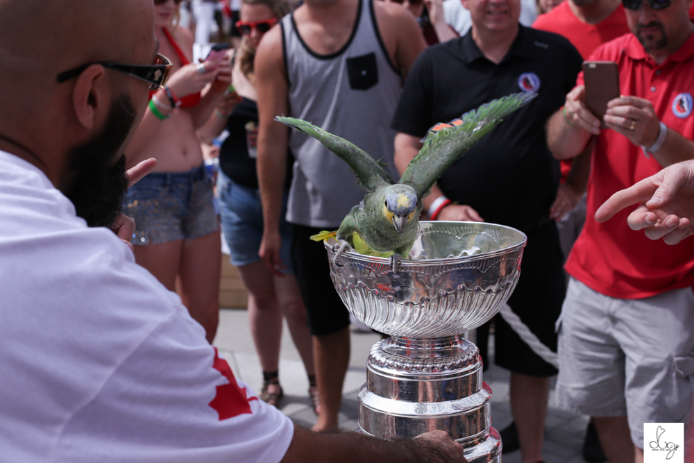 blackhawks toronto stanley cup party 2015-0126.jpg