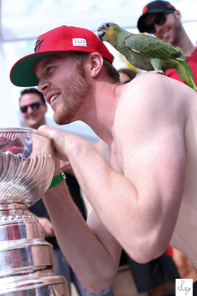 blackhawks toronto stanley cup party 2015-0130.jpg