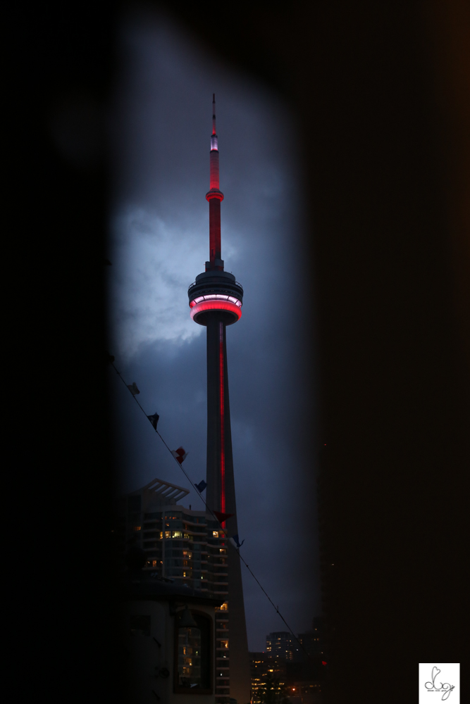 blackhawks toronto stanley cup party 2015-0454.jpg