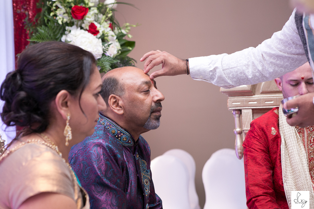 Nirosha and Dave_dream love grow_weddings beyond words ottawa photography LO RES-9891.jpg