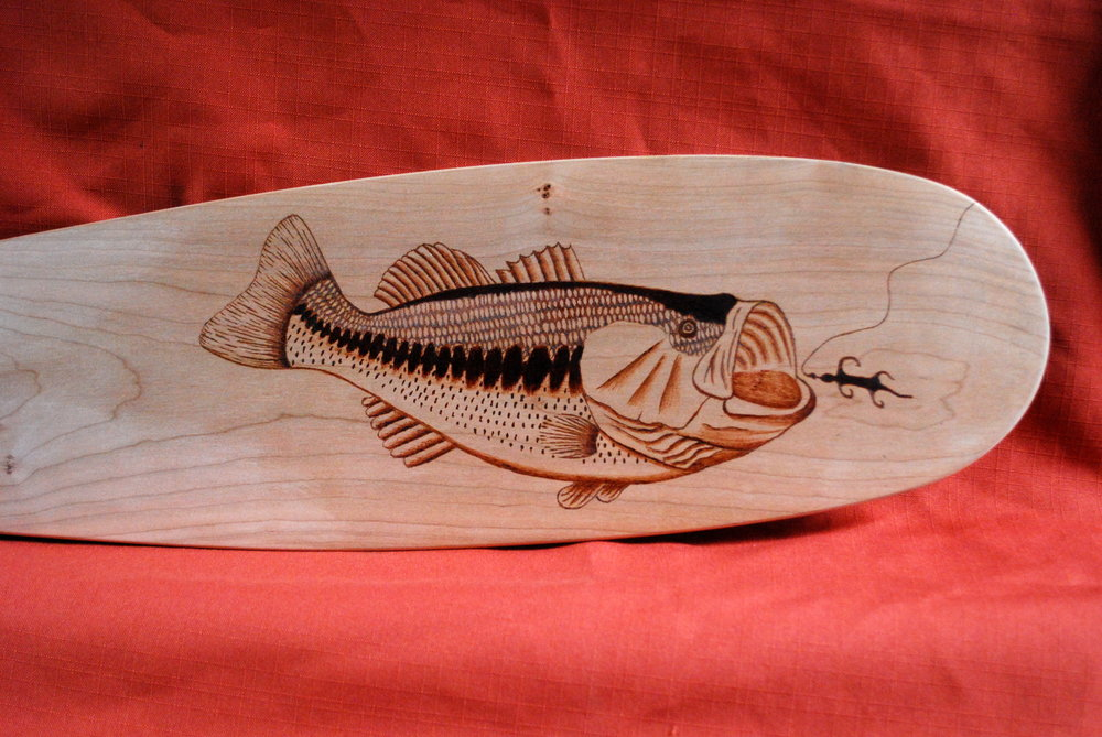 Bass on Cherry Paddle
