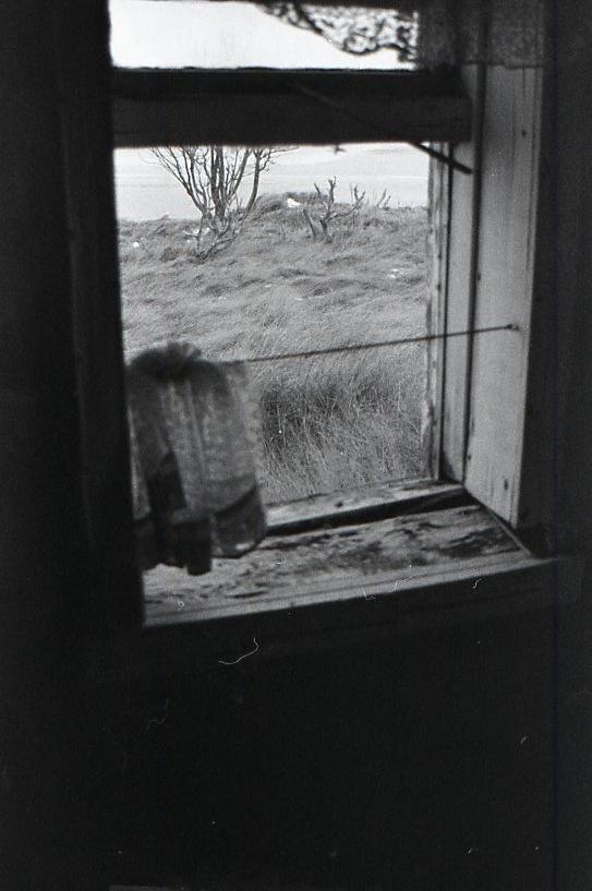 6.Forgotten-Windows.jpg