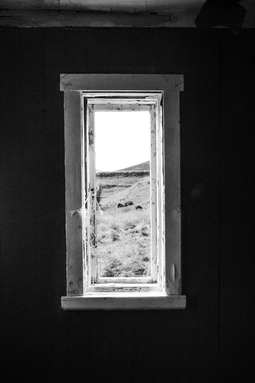 4.Forgotten-Windows.jpg