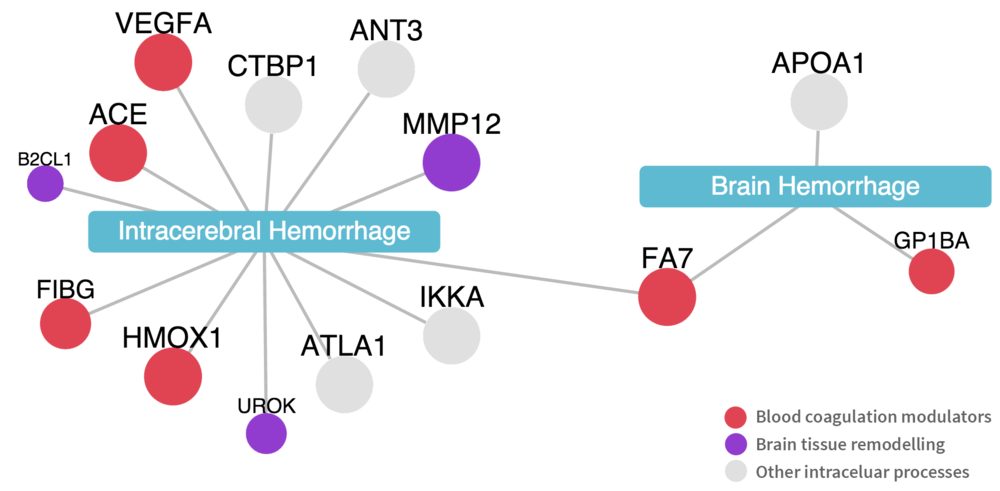 Figure 2. Network diagram showing relevant proteins and their biological associations.