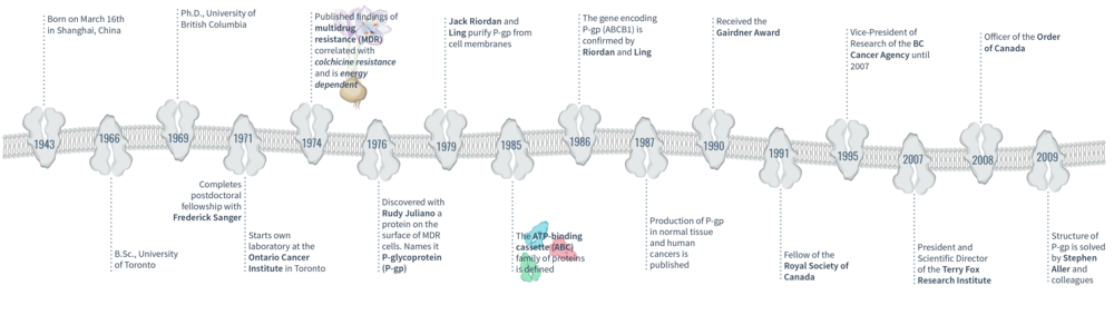 Figure 4. A timeline of significant events in VIctor Ling's lifetime.