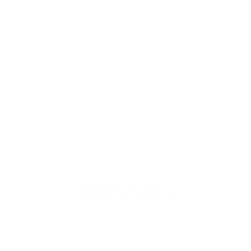 Paralympics.png