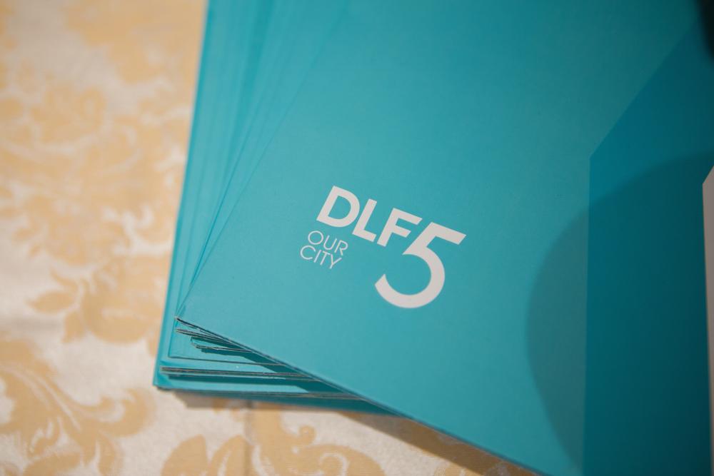 DLF-21.jpg
