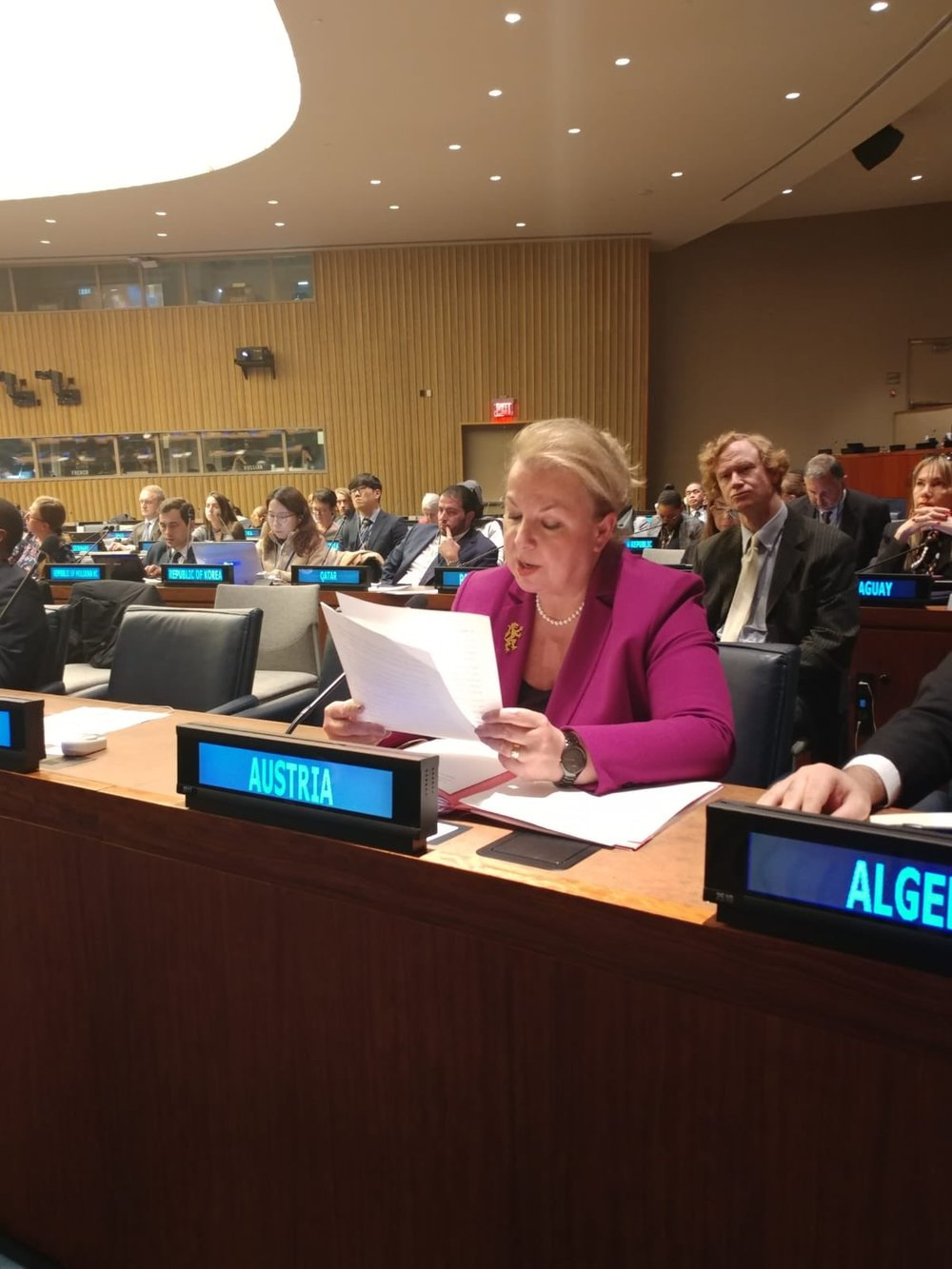 Minister Beate Hartinger-Klein delivers Austria's statement at the U.N. in New York