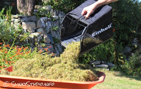Einhell BG-SA 1231 Electric Scarifier:Aerator Collection Basket.jpg