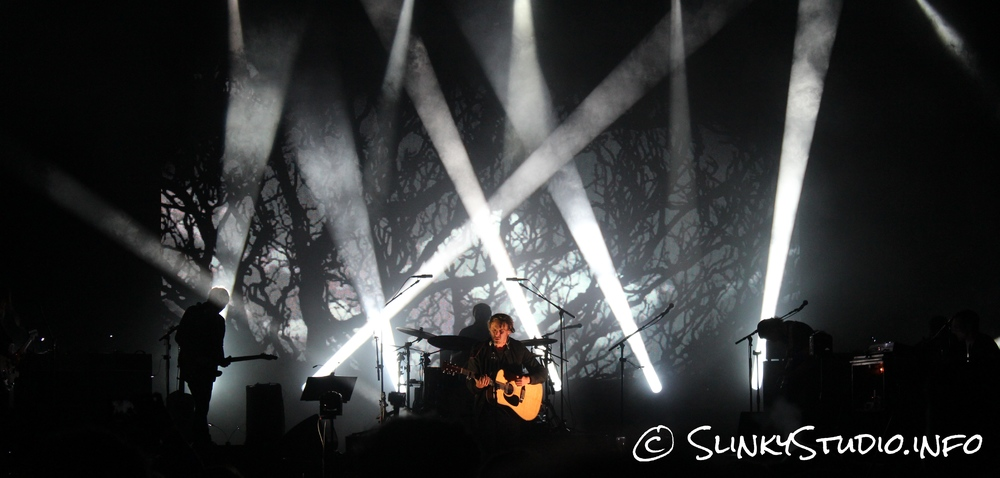 Ben Howard - Eden Sessions Trees Image Background