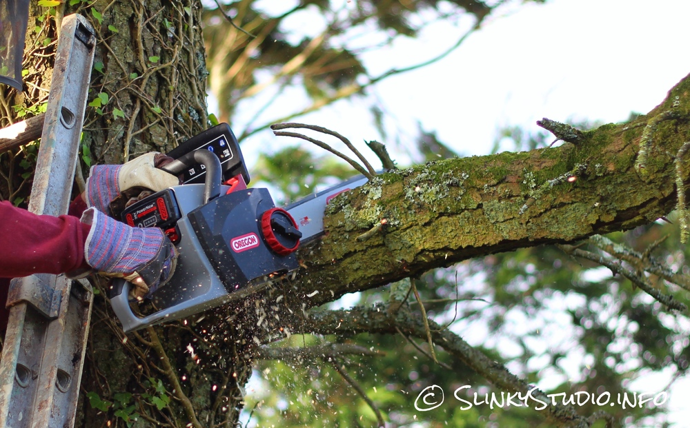 Oregon CS300 PowerNow Cordless Chainsaw High Branch Cutting.jpg