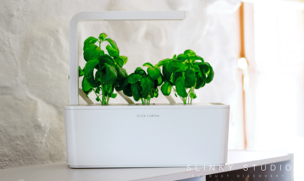 Click & Grow Smart Garden Growing Basil