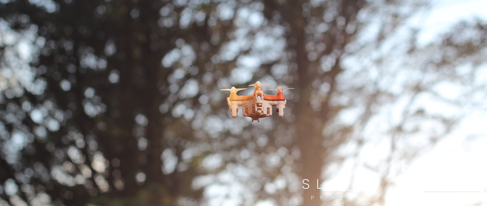 BuzzBee Nano Drone Flying in front of tree.jpg