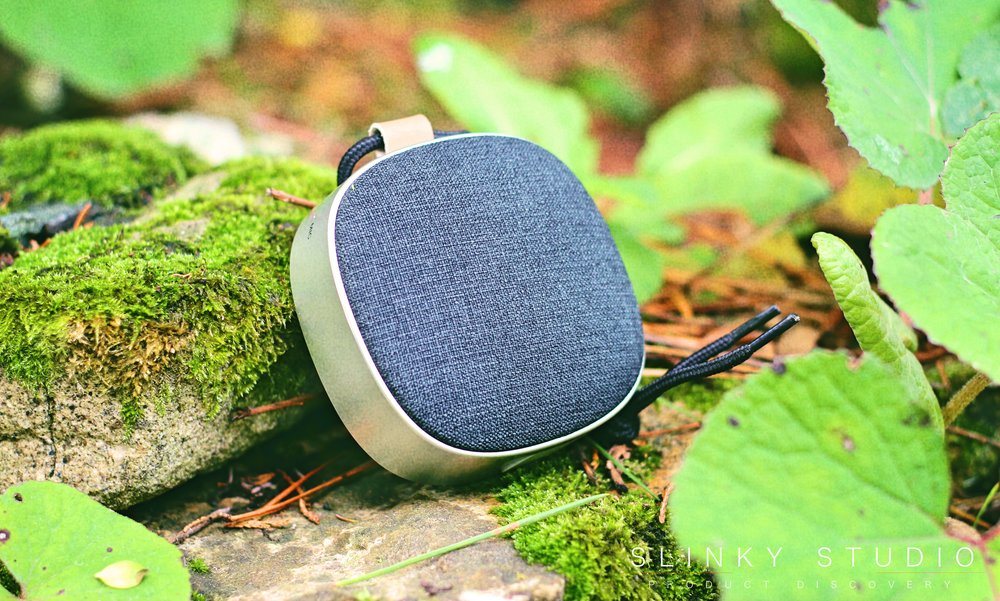 SACKit WOOFit Go Speaker Black Autumn Scene .jpg