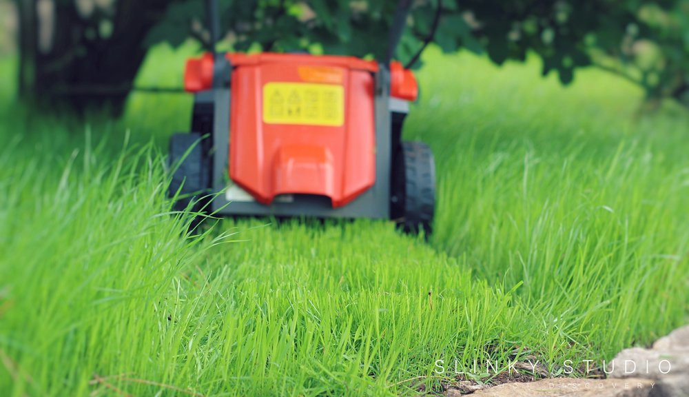 Flymo Mighti-Mo Cordless Lawnmower Cutting Performance