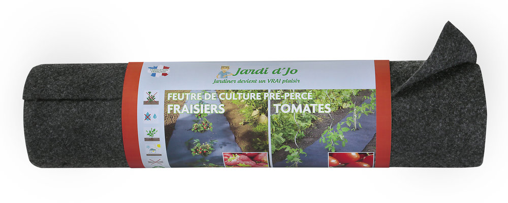 FC-fraisiers-tomates sans blister.jpg