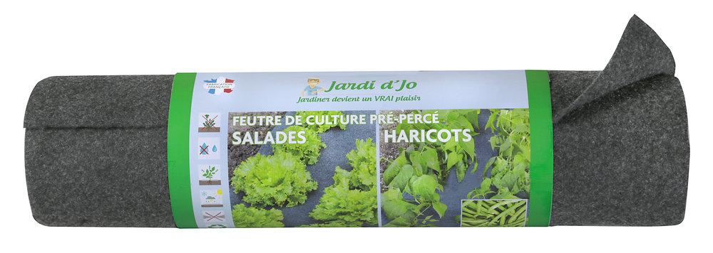 FC-salades -haricots sans blister.jpg