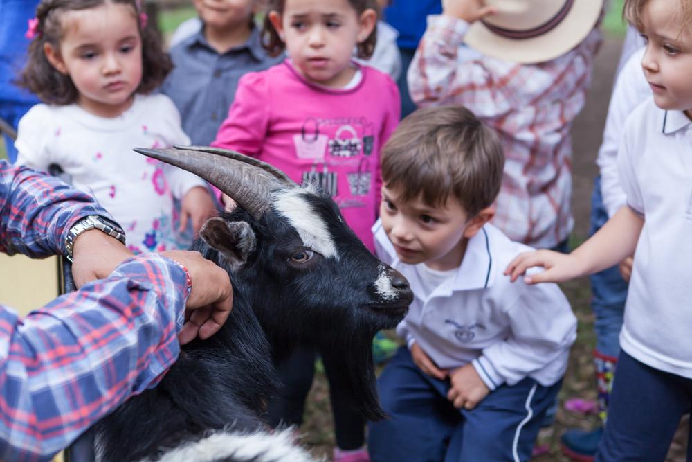004_jardines_infantiles_bogota_colombia_niños_fotografia_anuarios_halloween_navidad_granja_kids_yearbook_vida_alegre.jpg