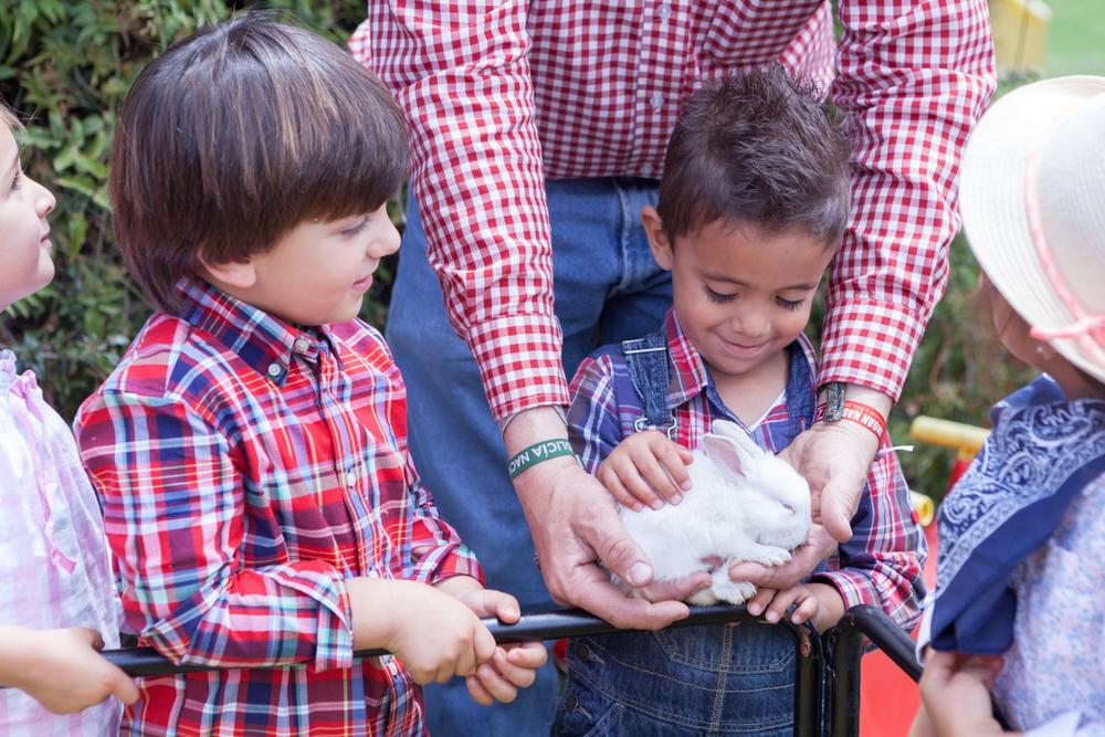 009_jardines_infantiles_bogota_colombia_niños_fotografia_anuarios_halloween_navidad_granja_kids_yearbook_vida_alegre.jpg