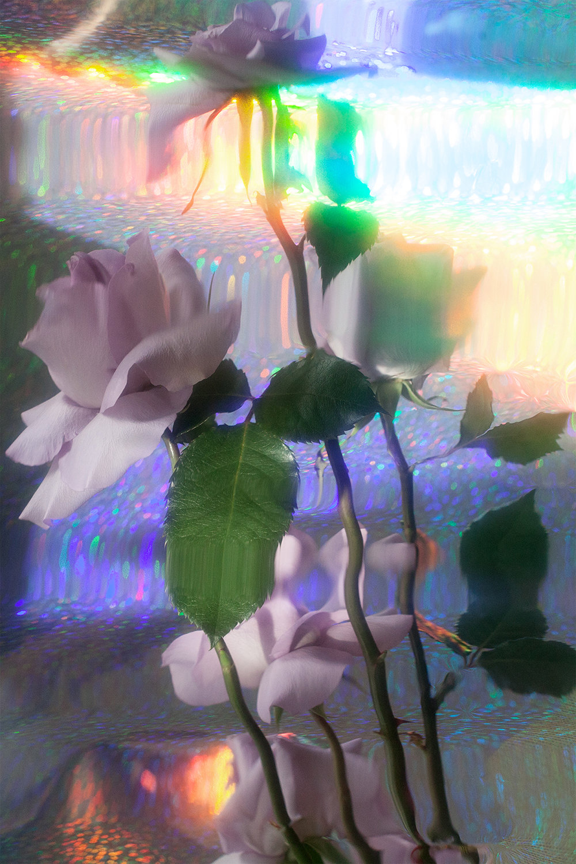 IMG_1353_FINAL.jpg