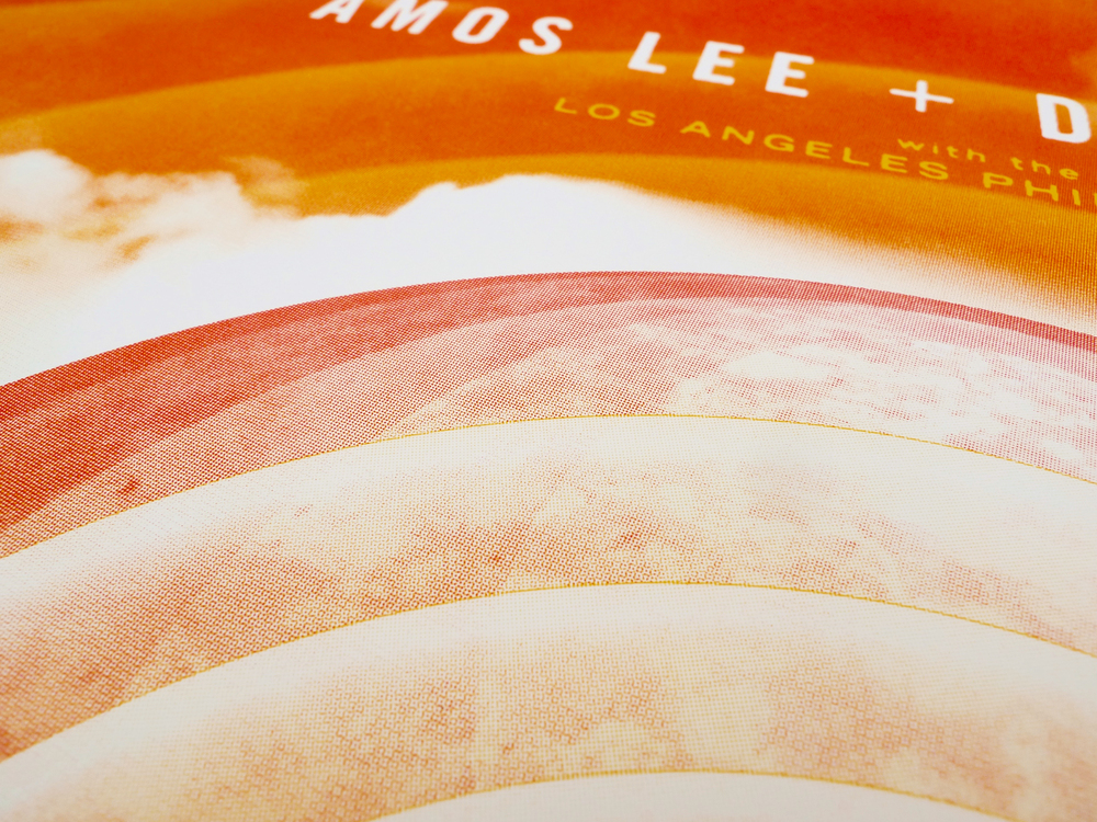 Amos Lee + David Gray Poster by DKNG