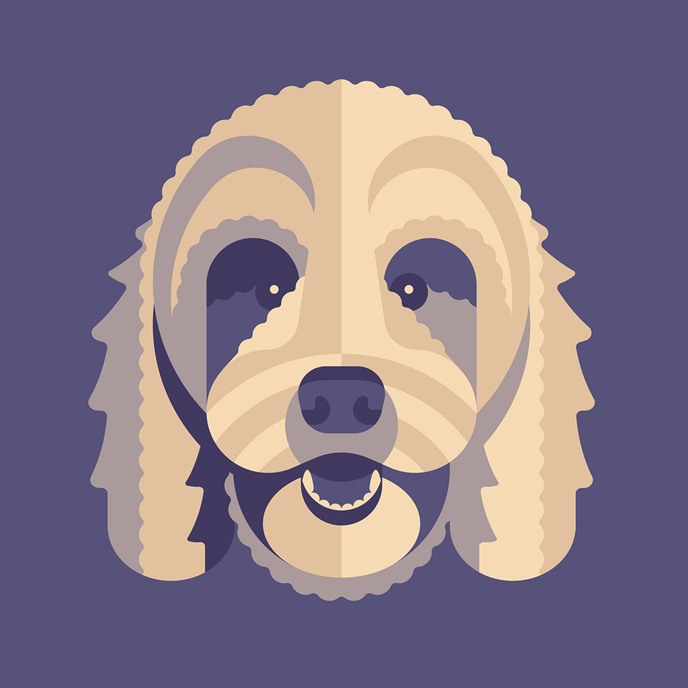 Golden Doodle Illustration by DKNG