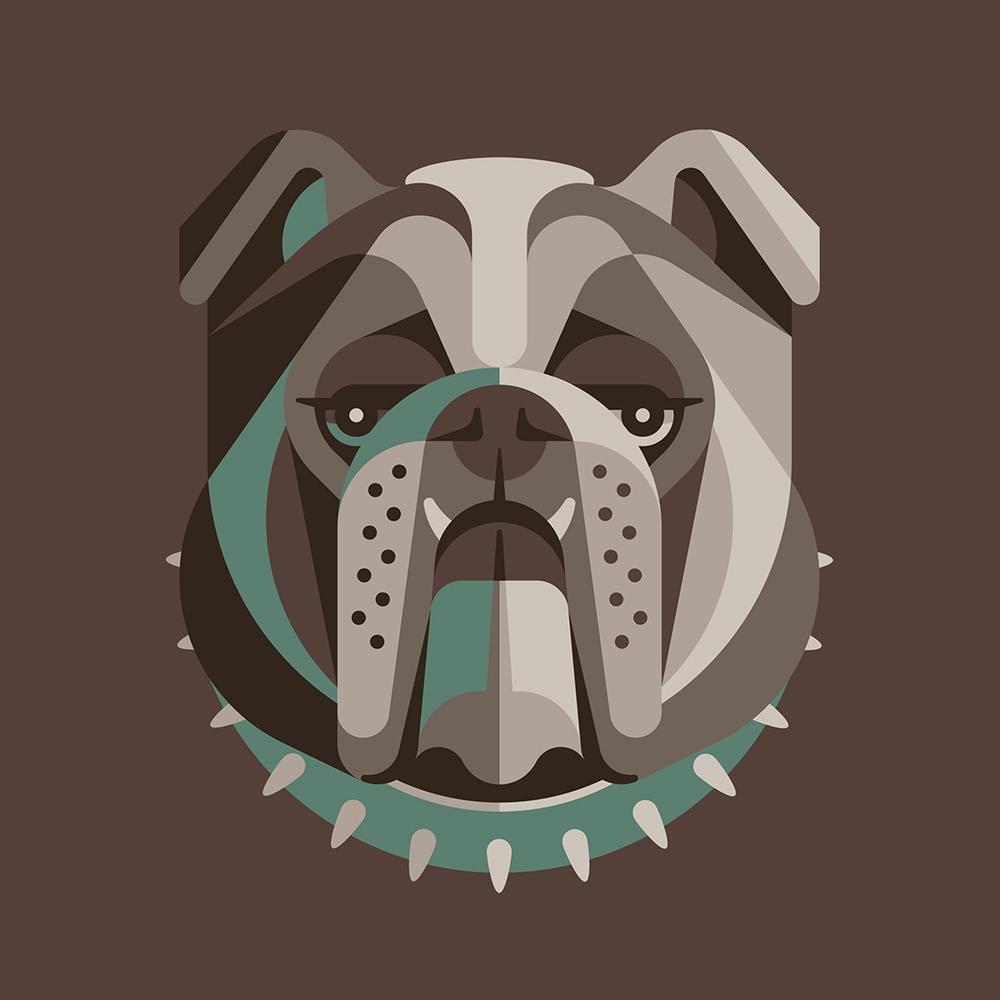 English Bulldog Illustration by DKNG