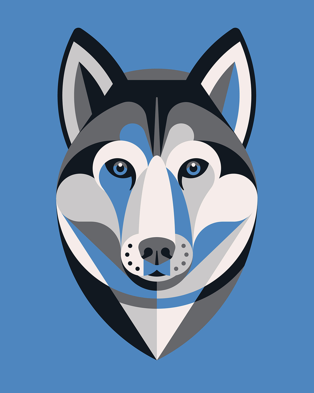 Siberian Husky Illustration by DKNG