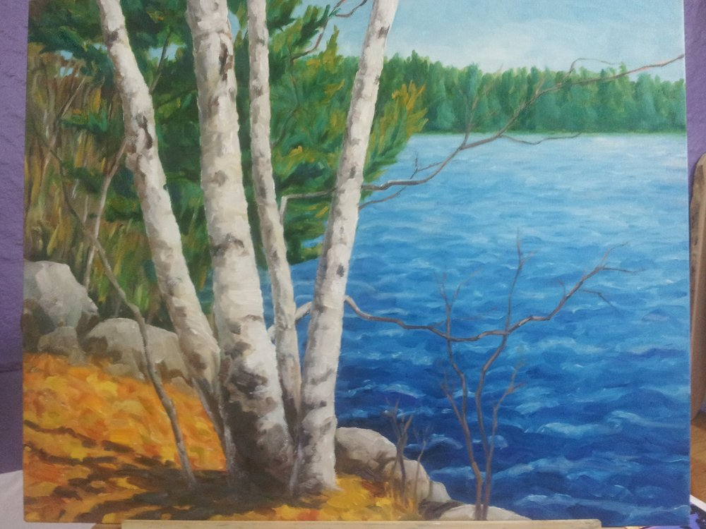 """Birches 16 x 20""""    Sold"""