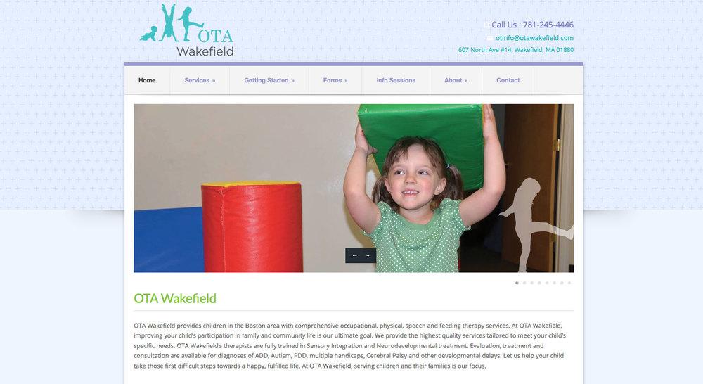 Web_OTA.jpg