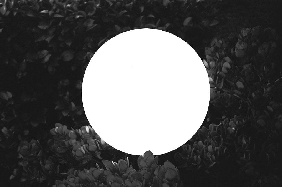 CircleLight-11.46.2013.jpg