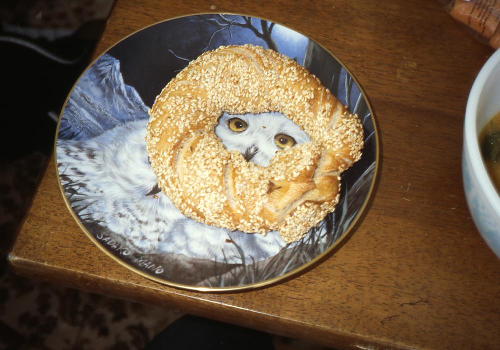 SesameHoopOwl-11.107.2012.jpg
