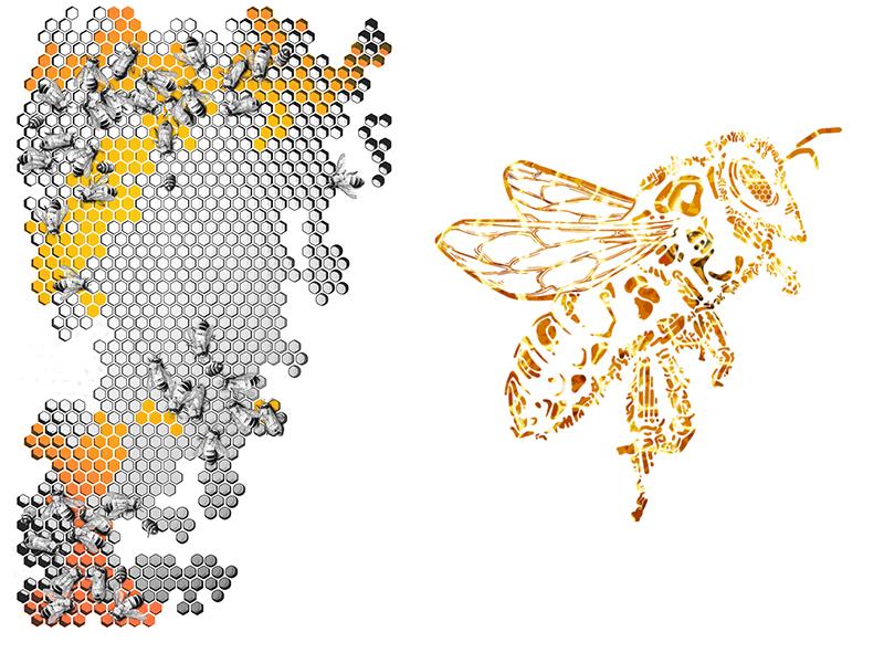 EiBO Gear_Bees_4kick_2.jpg