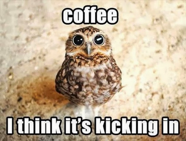 Fromhttp://funnyout.com/coffee-meme/