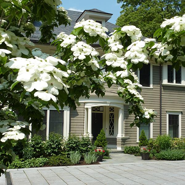Marsh Road Residence
