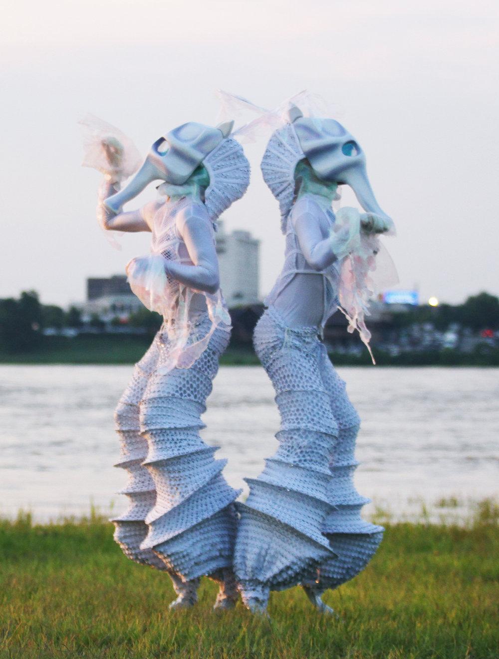 seahorse21.jpg