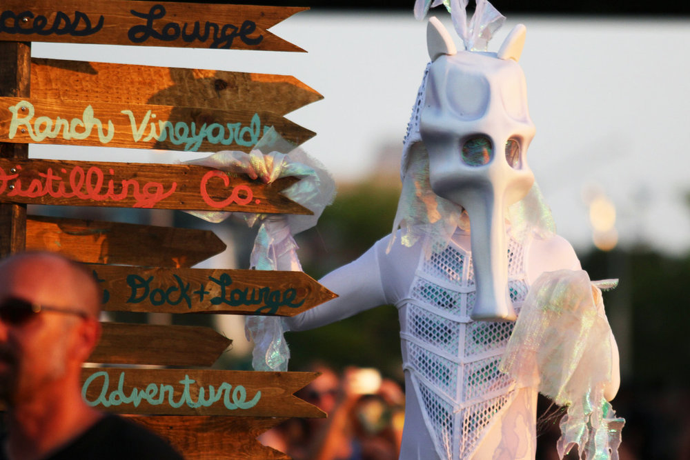 seahorse14.jpg