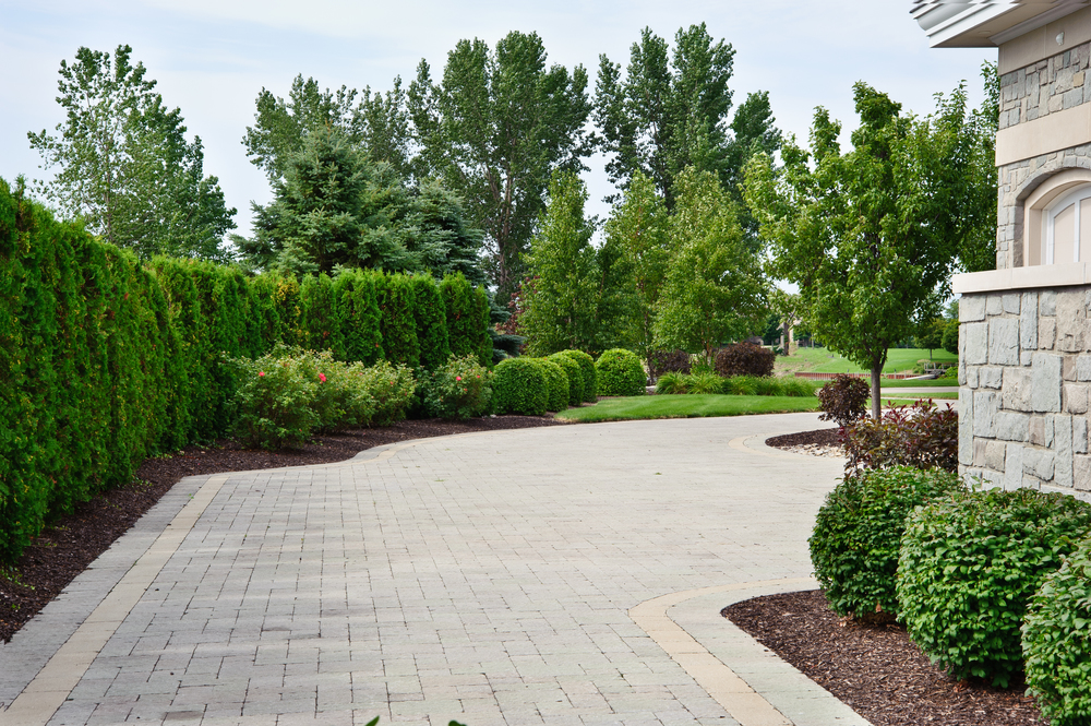Paver Driveway with Border