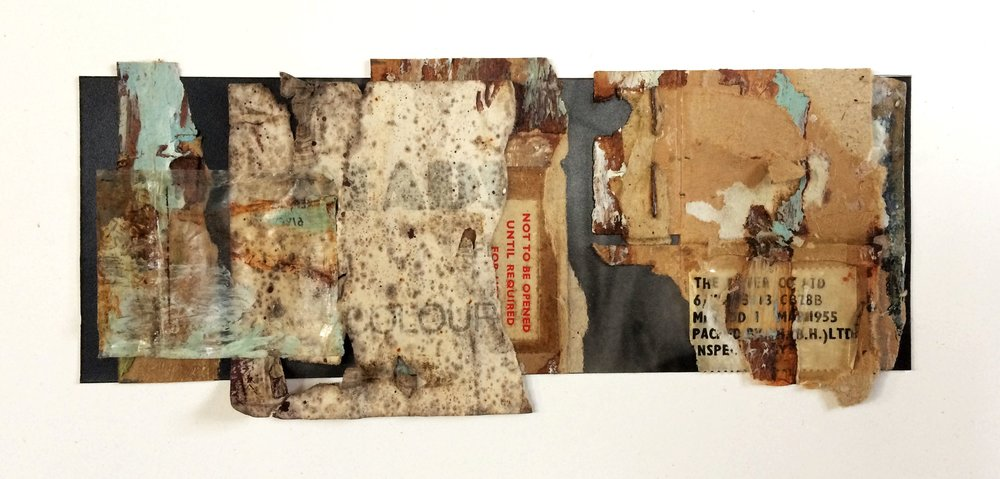 Long collage.jpg